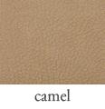 fez_camel